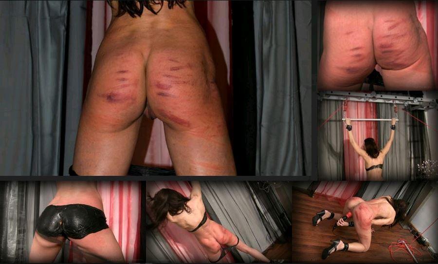 Queensnake bdsm videos