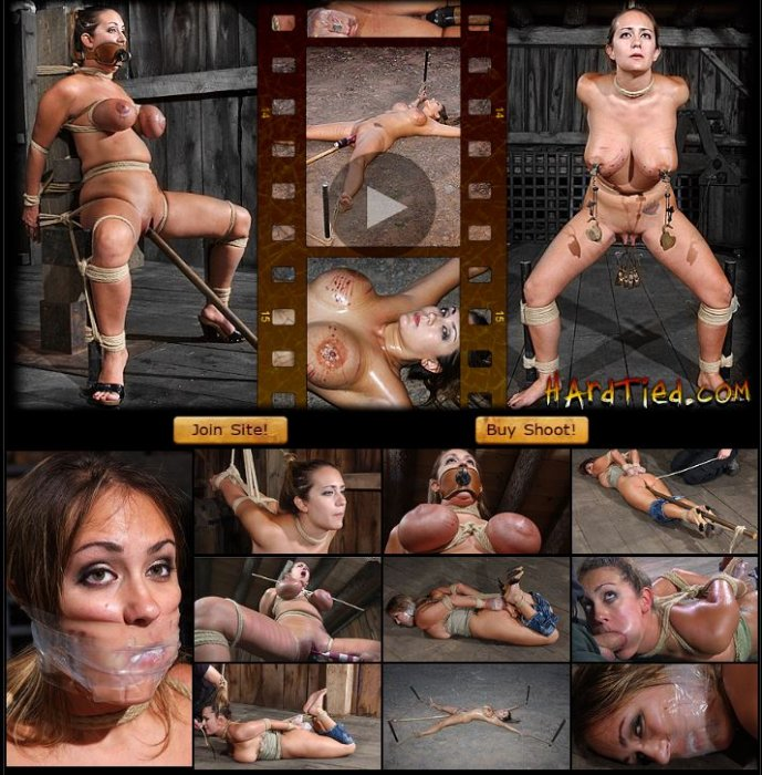 20100825 HardTied - Vulnerable, Trina Michaels