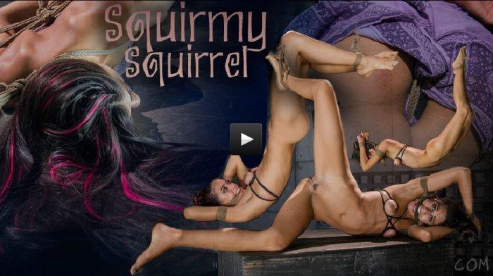 20140917 HardTied - Squirmy Squirrel, Lyla Storm, Jack Hammer