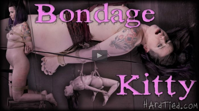 20150415 HardTied - Bondage Kitty, Freya French, Jack Hammer