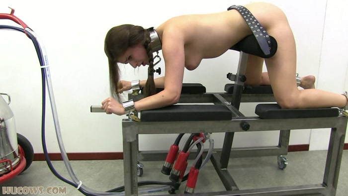 Hucows - Nelly � The new milking frame HD (742 MB)
